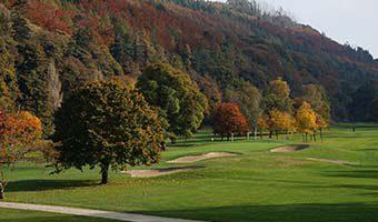 Fall golf featured 340x200