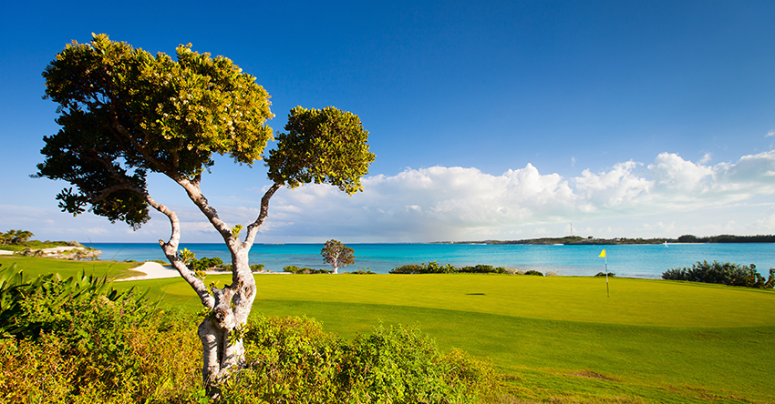 Royal Blue Golf Course - Baha Mar Nassau, Bahamas